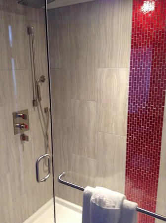 Hotel Elan: Big shower