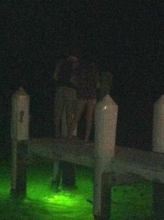 Snook Inn : pier/boat slips