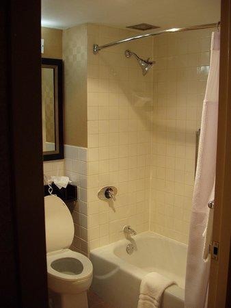 City Place - Downtown St. Louis : Bathroom