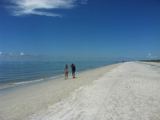 Tigertail Beach : great place to walk along the Gulf of Mexico