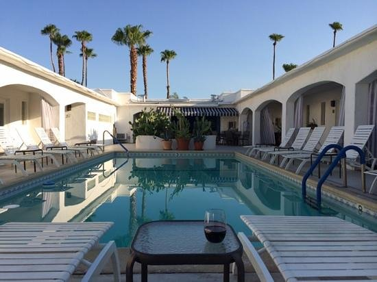 POSH Palm Springs Inn : Fabulous Pool
