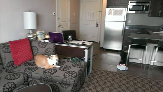 Residence Inn Boston Logan Airport/Chelsea: Living space was nice and roomy