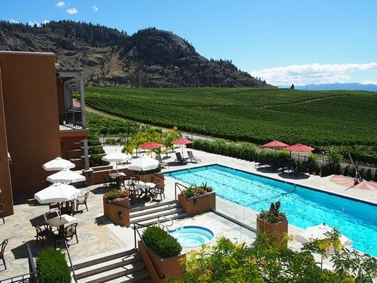 Burrowing Owl Estate Winery Guest House: Pool and rooms with a view