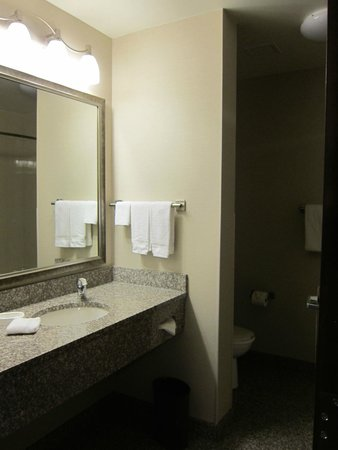 Drury Inn & Suites Orlando: Clean roomy bathroom