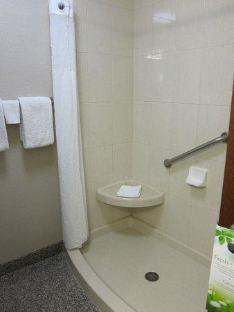 Drury Inn & Suites Orlando: Roomy, comfortable shower