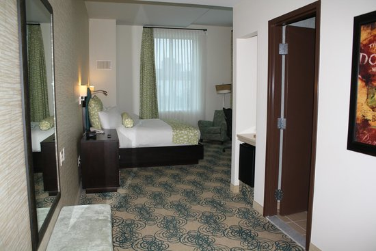 Hotel Skyler Syracuse, Tapestry Collection by Hilton: spacious room