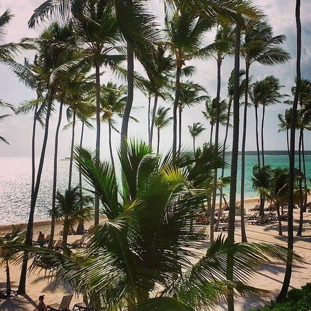 Barcelo Bavaro Beach - Adults Only: Superior Ocean Front Room