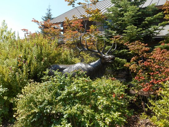 Castle Rock, WA: The Elk Statue outside the building entrance.