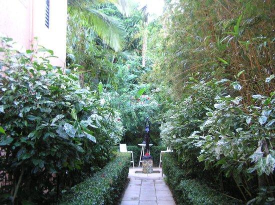 Martinique on Macrossan : Garden