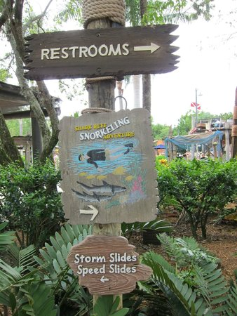 Parque Acuático Disney's Typhoon Lagoon: Snorkelling with sharks for free