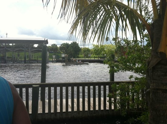 Jungle Erv's Everglades Airboat Tours: water view from the parking lot