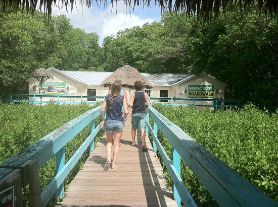 Jungle Erv's Everglades Airboat Tours: Walkway to the boardwalk entrance
