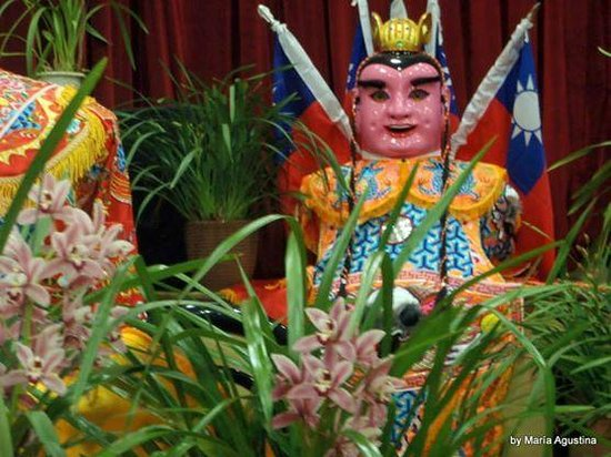 Chinatown : exposición de orquídeas