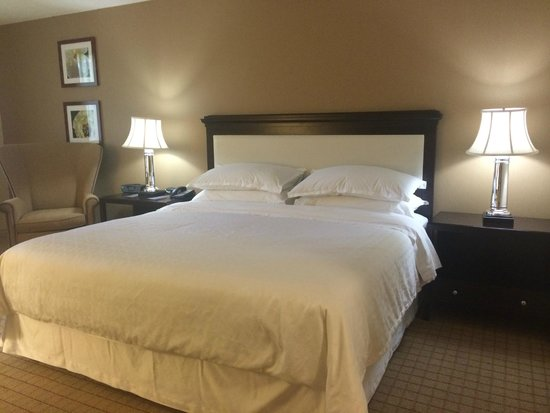 Sheraton Sunnyvale: Nice bed and comfy