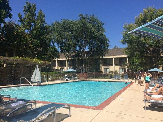 Sheraton Sunnyvale: Nice Pool