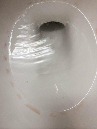 36 Hudson Hotel: slimy ring around toilet