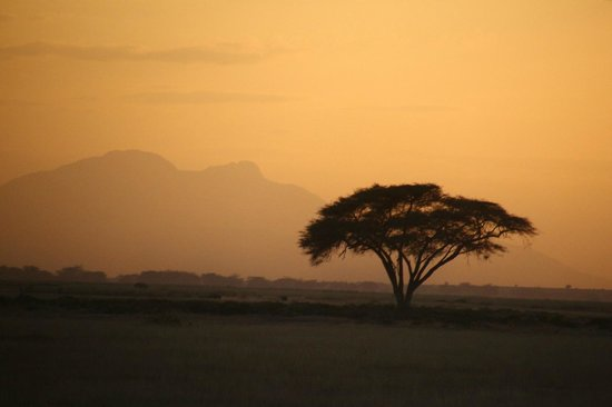 Explorer Kenya: The mountain