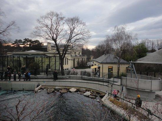 Tiergarten Schoenbrunn - Zoo Vienna: Muy bueno!