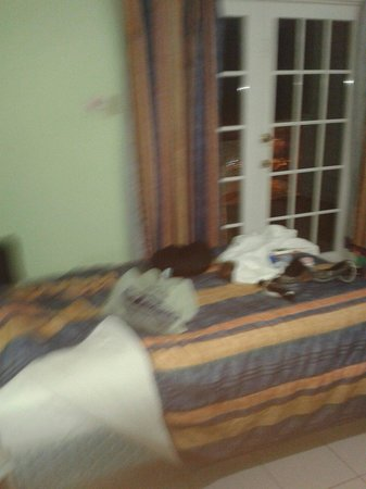 Caribic House: Twin room