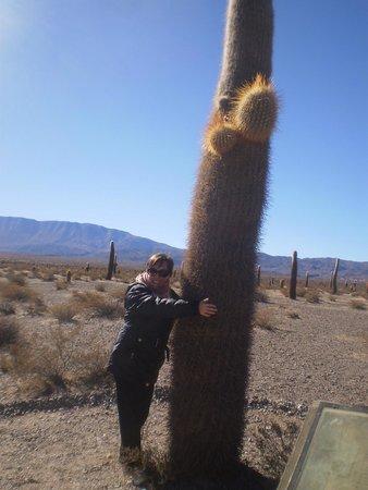 Parque Nacional Los Cardones: Una muchacha abraza el cardón pa que se cumpla la tradición