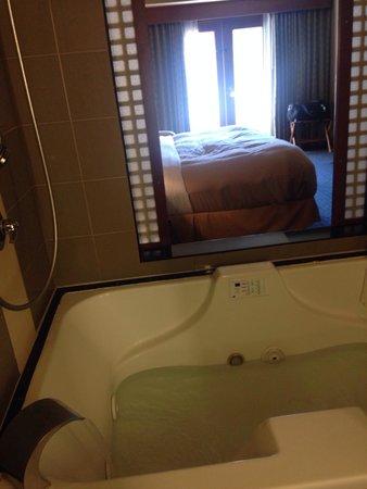 Salish Lodge & Spa: Bath