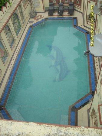 Umaid Bhawan Heritage House Hotel: pool