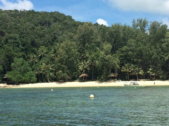 Rimba Resort : Arriving at the resort
