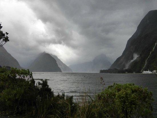 Fiordland National Park (Te Wahipounamu): Milford Sound on a rainy day