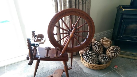 Oliver's Farm Stay Bed & Breakfast: Display items - huge pine cones