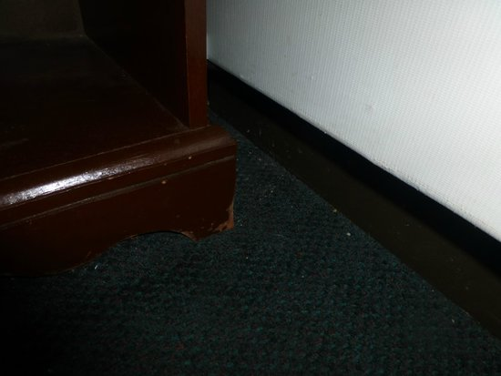 Budget Host Inn NAU / Downtown Flagstaff: dirty and damp carpet