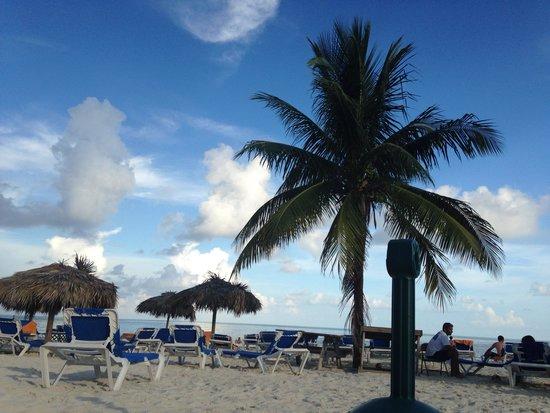 Viva Wyndham Fortuna Beach : Beautiful beach
