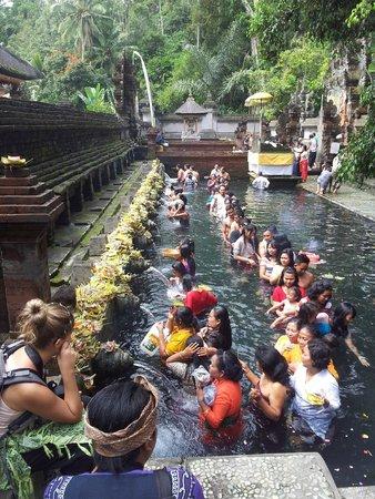 Bali Made Tour - Day Tours: Tirta Empul holy temple