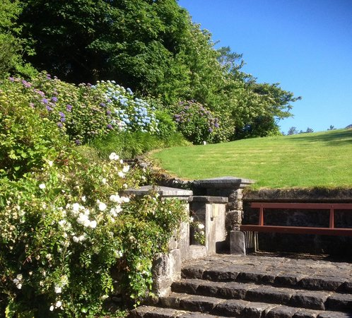Ballynahinch Castle Hotel : Beautiful landscaping and hydrangeas