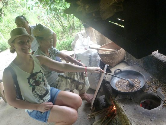 Bali Made Tour - Day Tours: Helping roast the coffee