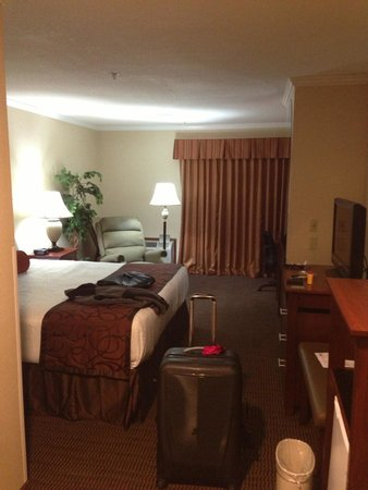 Best Western Plus Landmark Inn: Great fireplace room on 3rd floor