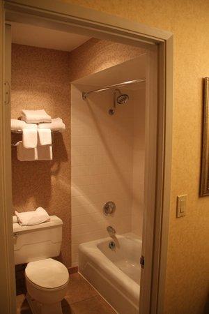 Red Lion Hotel Port Angeles: bathroom crampy