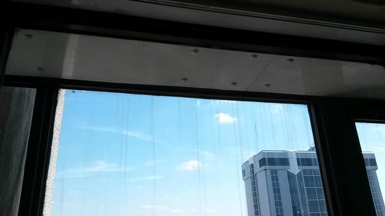 Hilton London Metropole: The Hilton Metropole's idea of a clean window