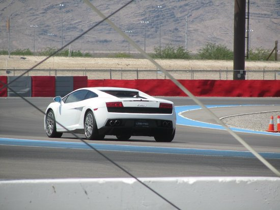 Exotics Racing: perfect course