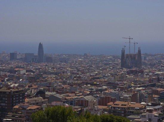 Torre Agbar : Agbar из парка