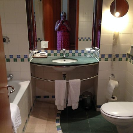 The St. David's Hotel: bathroom