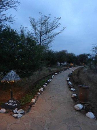 Sentrim Amboseli: Pathway