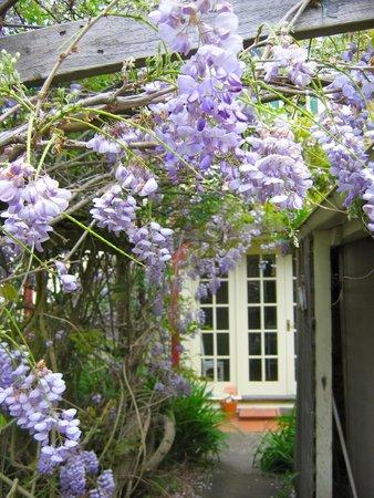 Crabtree House : Wisteria Suite