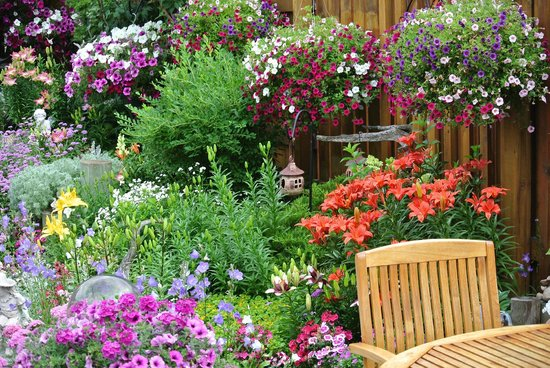 Austrian Haven Bed and Breakfast: The Gardens