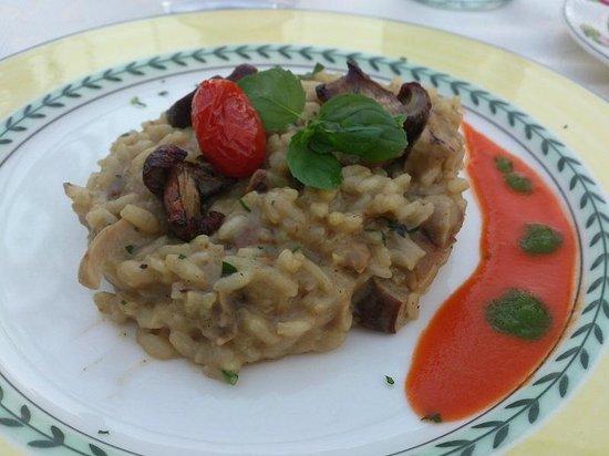 Hotel Garden: Mushroom Risotto
