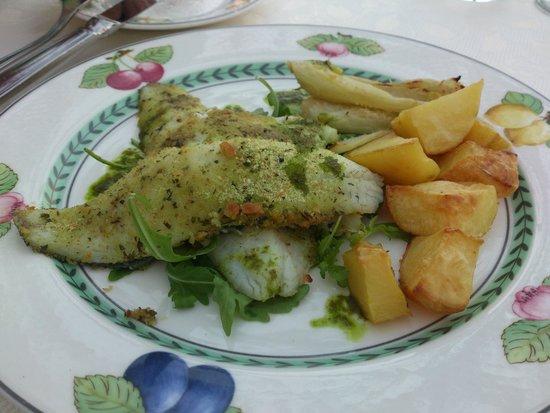Hotel Garden: Fish