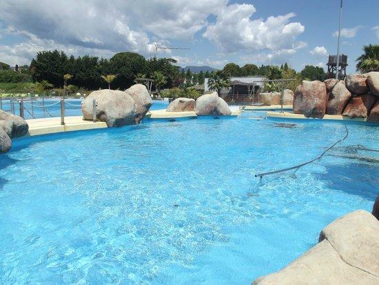 Marineland : bassin