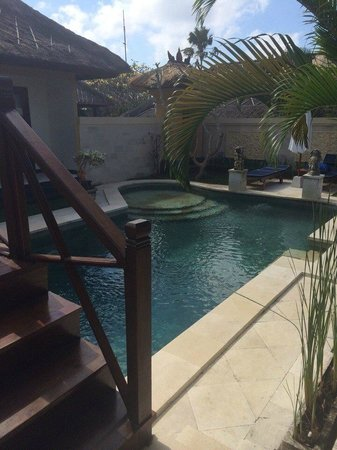 Halcyon Villas: бассейн