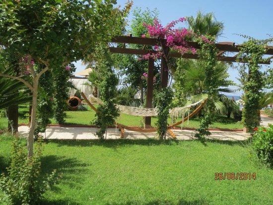 Saphir Resort & Spa: Hotel garden
