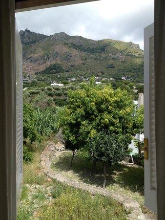 Park Hotel Terme Mediterraneo: вид из окна