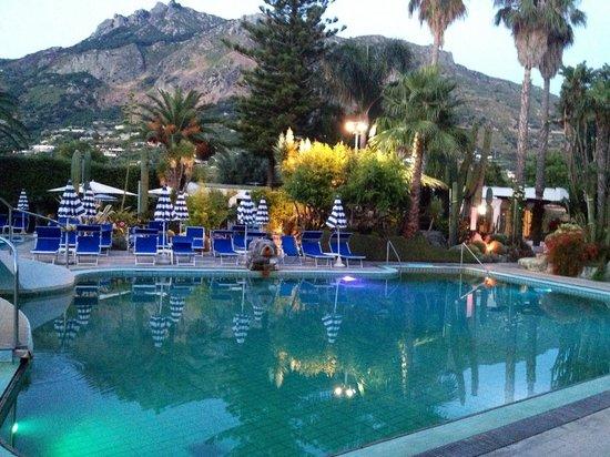 Park Hotel Terme Mediterraneo: один из басиков